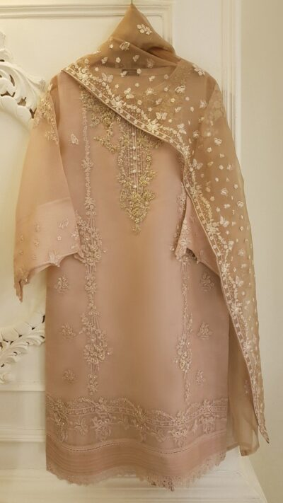 Agha Noor S101130 Peach Pure Organza Embellished Long Shirt + Dupatta Winter 2020 - chambeili.com